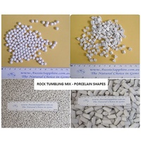 Porcelain Ceramic Polishing Media - Rock Tumbler Mix. 1kg Lot